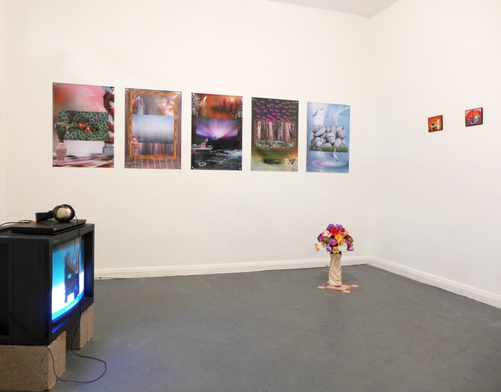 Clockwise: Leonardo, 2011; Clown Fish.jpg, Horizon.jpg, Aurora.jpg, Redwoods.jpg, Rocks.jpg, 2013; Flowers (Arrangement), 2013